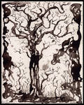 solum III, tree studies