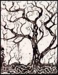 solum V, tree studies