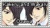 GH: Kakeru and Wakaru Ozawa by just-stamps
