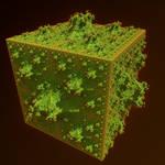 IFS fractal 8