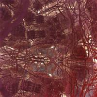 IFS fractal 11 by KrzysztofMarczak