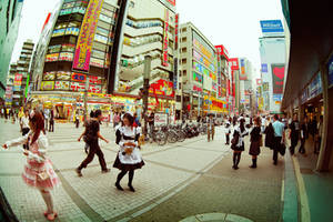 Japan From The Eye Of Fish 13 by hakanphotography