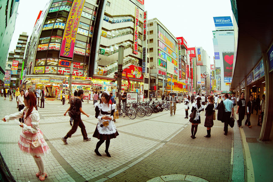 Japan From The Eye Of Fish 13