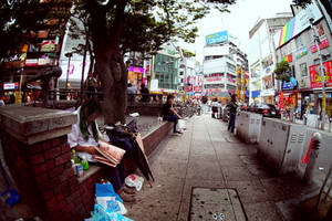 Japan From The Eye Of Fish 14 by hakanphotography