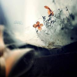 forgotten... by vularia
