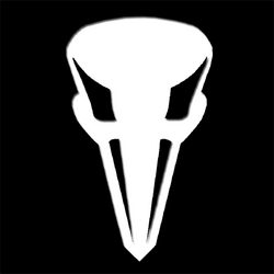 Avian Punisher Skull by JacobJawson