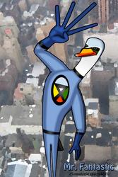 Mr. Fantastic (King Eider Duck) by JacobJawson