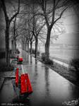 Waterfront in Rain