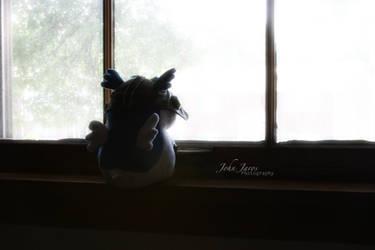 Daydreaming by PhotographerJohn