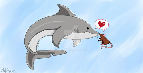 The Shark and The Rat