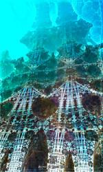 Bones in blue water