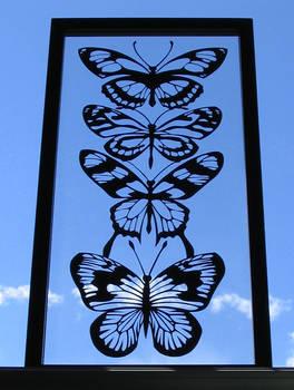 Hyperbole of butterflies 2