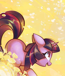 Couleurs by mirroredsea
