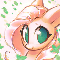 may by mirroredsea