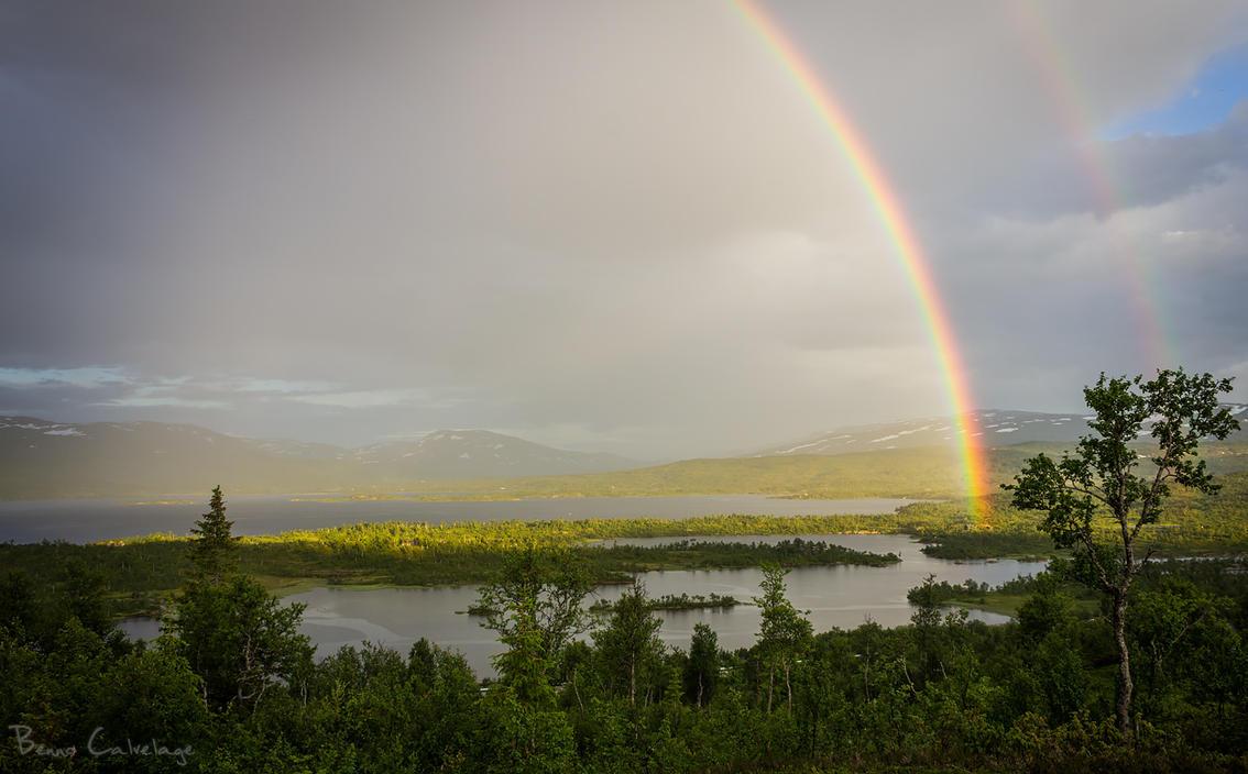 The Lush Rains of July by Pinho
