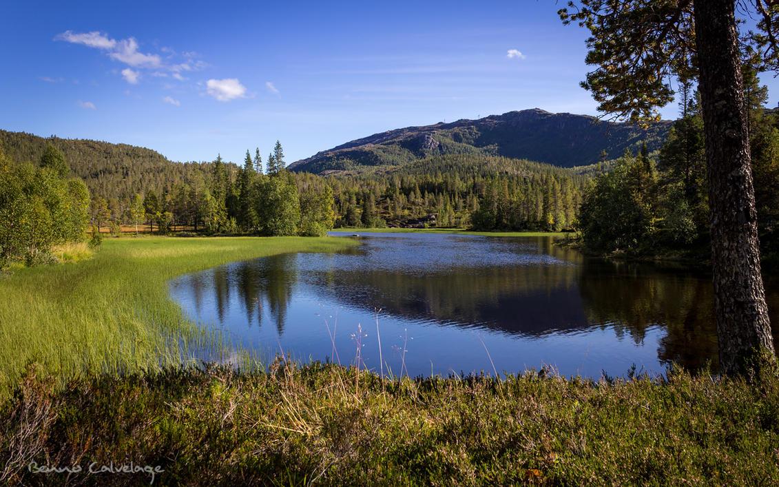 Peaceful Lake by Pinho