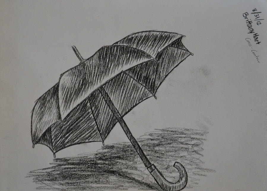 Line Art Umbrella : Cross contour study umbrella by thelonerfernclaw92 on deviantart