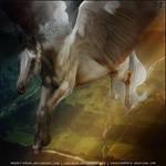 Appy Pegasus