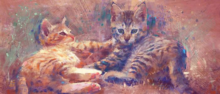 Cats impressionism by MartaNael