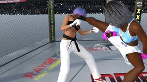 Karate vs kickboxing