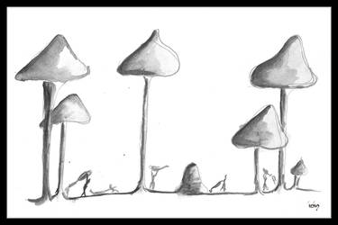 Planting mushrooms