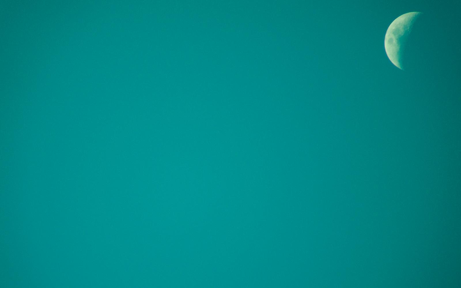 teal green