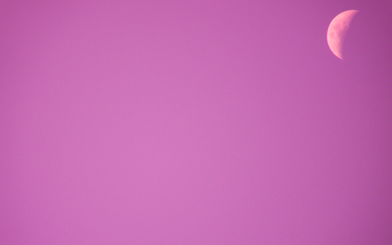 pink wallpaper web: Baby Pink Wallpapers Pink Baby Background Wallpaper
