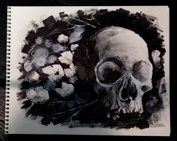 texture skull by cbernhardt