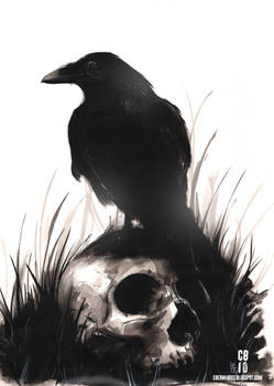 Inkwash Skull and Bird