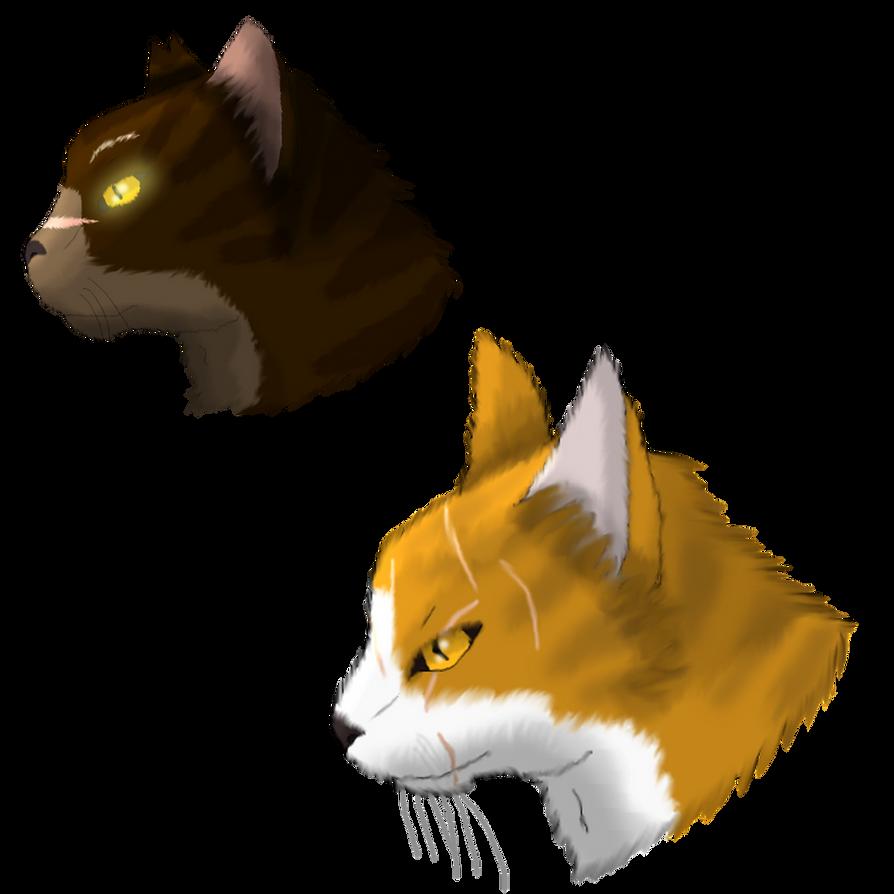 Warrior Cat Headshots: Tigerstar And Mapleshade By XX