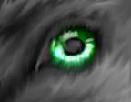 In The Eyes by xX-NIGHTBANEWOLF-Xx