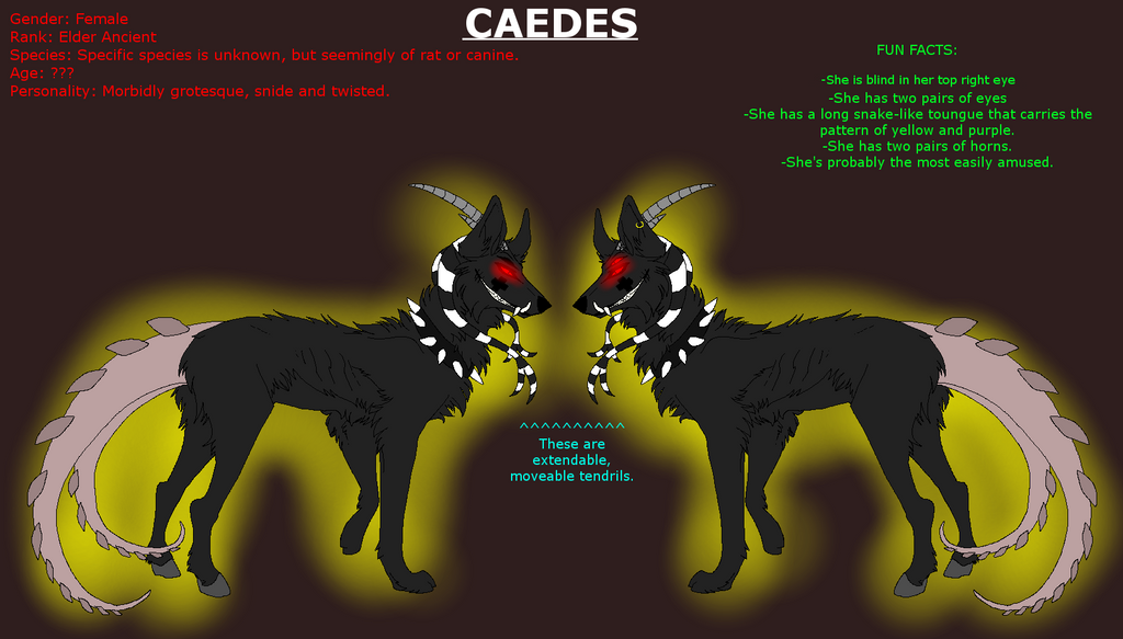 Simple reference Sheet: Caedes by xX-NIGHTBANEWOLF-Xx