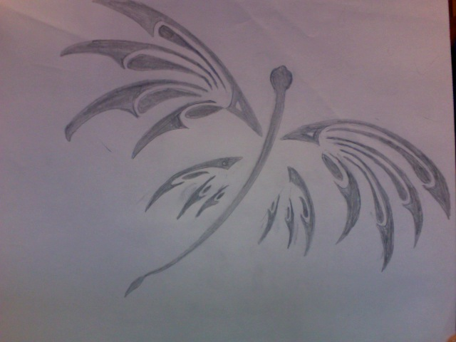 Dragonfly Drawing Images. insect to draw dragonflies