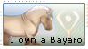 I own a Bayaro Stamp by thebigwolflion