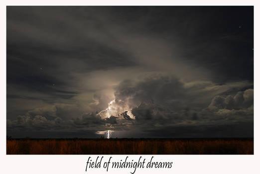 FIELD OF MIDNIGHT DREAMS