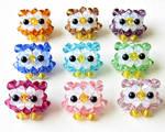 Baby Owls in Shop!