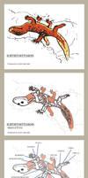 Ichthyostygeon Skeleton