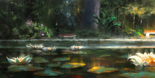 Water lily by zhaoenzhe
