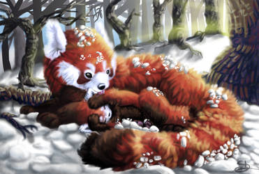 84. Out Cold by Meteor-Panda