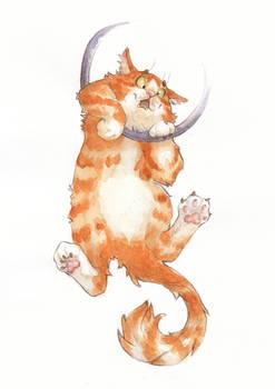 Cat illustration - Watercolor