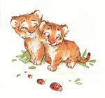 Brothers - Tigers in Watercolor
