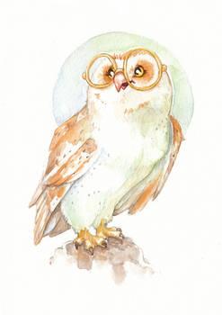 Owl - Watercolor