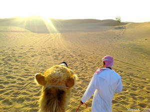 Our Way Through The Dunes