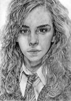 Hermione Granger, Harry Potter by LittleDragonZ