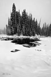 It's Snowing by Dani-Lefrancois