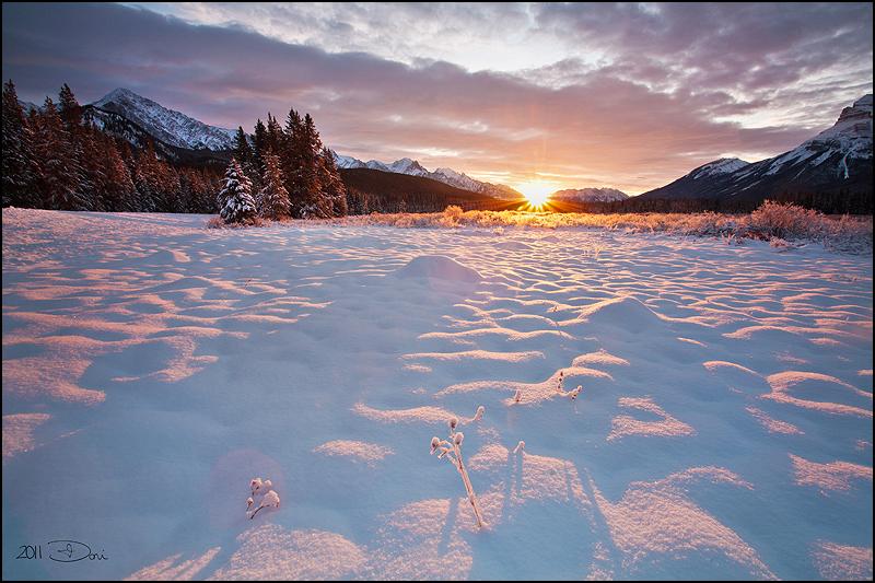 Heat Of Winter by Dani-Lefrancois