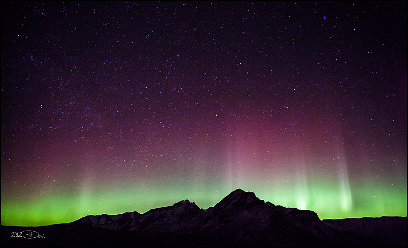 Dancing Aurora by Dani-Lefrancois