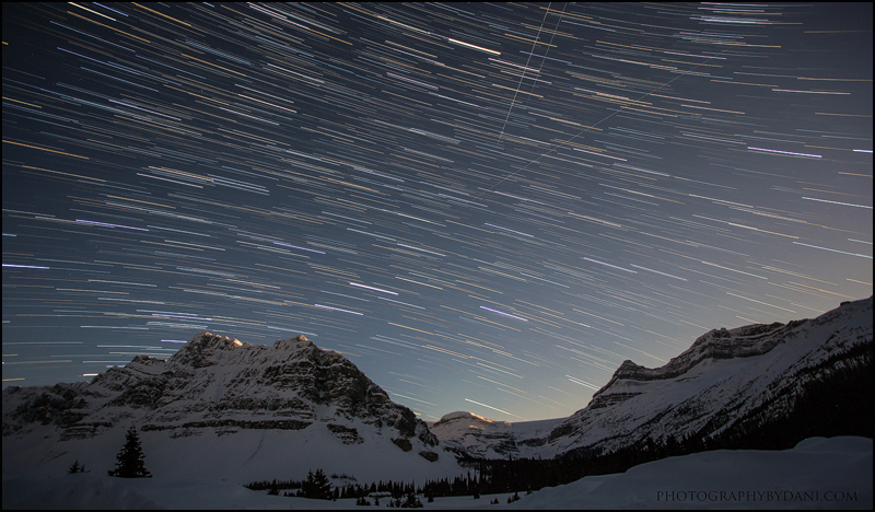 Starzz by Dani-Lefrancois
