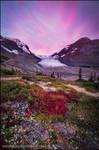 Colourful Tundra