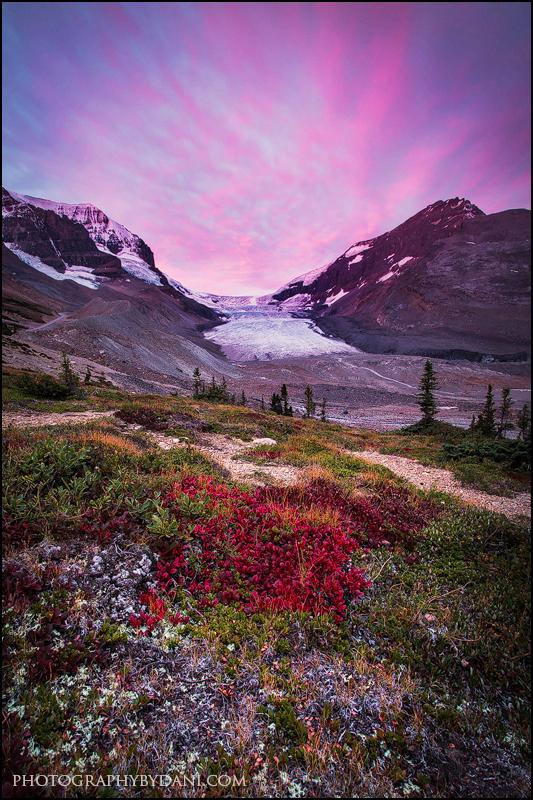 Colourful Tundra by Dani-Lefrancois